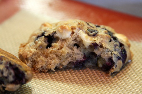 Maine blueberry cookie