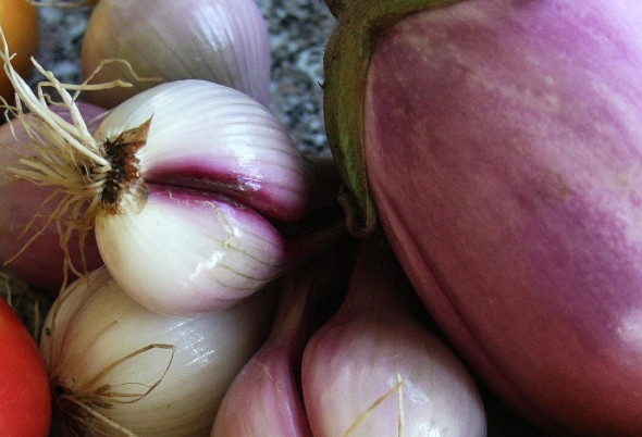 shallots and eggplant