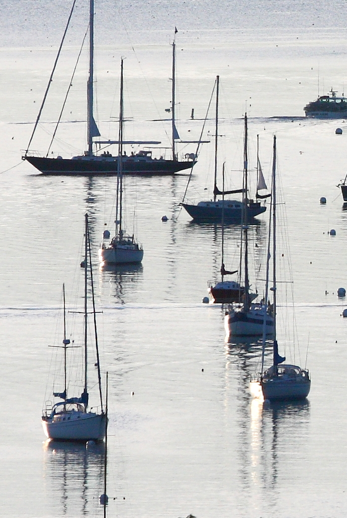 early morning light on the boats in Southwest Harbor