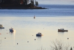 lobster boats3