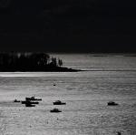 moonlit harbor4c